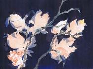 grafiek003b-magnolia-200287000029